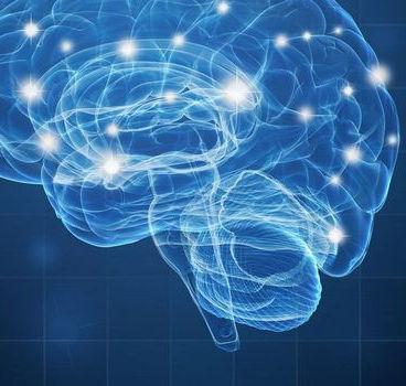 Cerveau neurones lumineuses.jpg