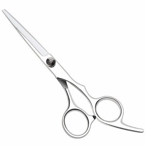 Professional Hairdressing Scissors
