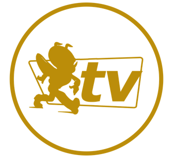 HTV-Bug-GoldGreypsd-Circle_2x.png