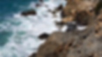 BeachScene-web.png