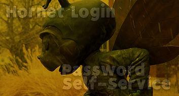Hornet Login with Password Self Service Graphic.jpg