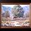 Thumbnail: Tucson Eucalyptus after the Rain SOLD