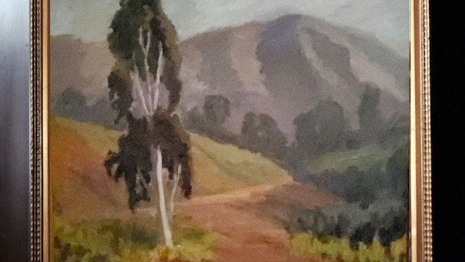 Rancho Santa Fe Eucalptus.