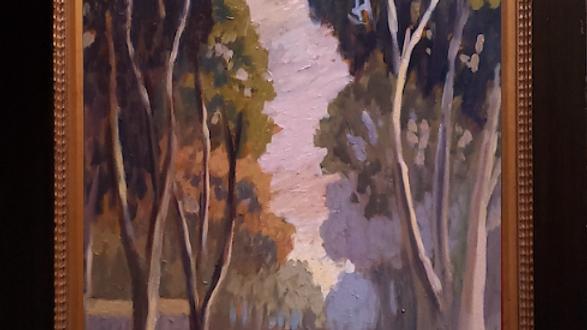 Ramona Eucalyptus
