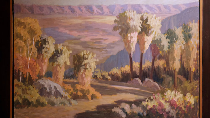 Indian Canyons in Early Morning Light 62 by 72 framed