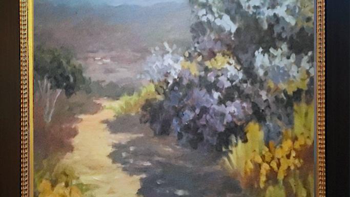 Rancho Bernardo Wild Lilacs