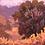 Thumbnail: Santa Ysabel Oak