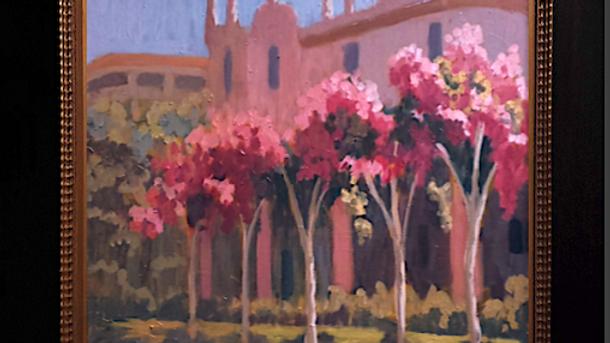 Crepe Myrtles on the Prado