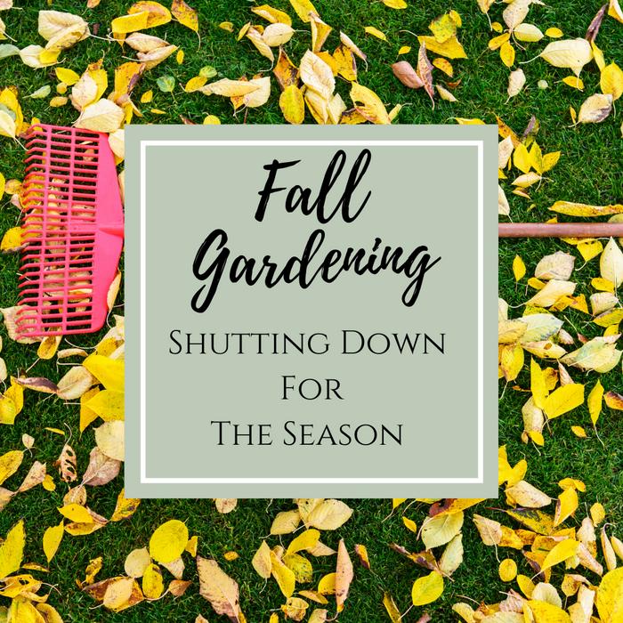 Fall Gardening: Shutting Down for the Season