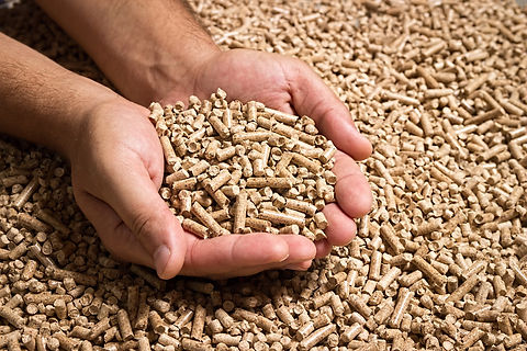 Wood pellets in the background. Biofuels
