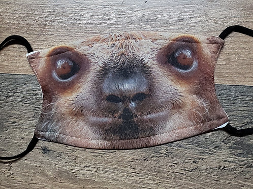 Sloth face mask