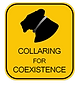 LL_collaring_for_coexistance_whitebackgr