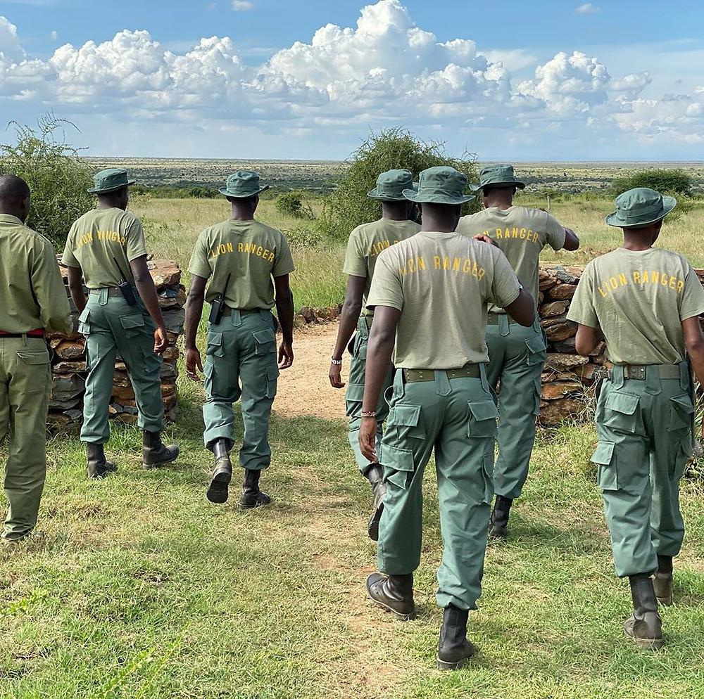 Lion Rangers, Save wild lions, lion conservation