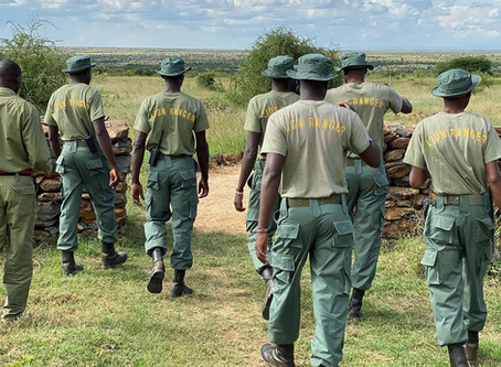 Lion Recovery Fund immerses in the role of Lion Rangers