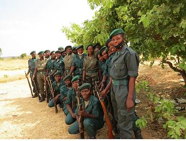 team of Zambian community scouts safeguarding wildlife habitat