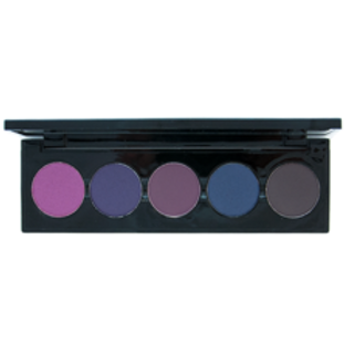 5 Shade Palette Berry Earthy Eyeshadow