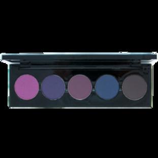 5 Shade Palette for Darker Shades Eye Shadow