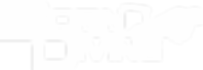 Logo Born white2.png