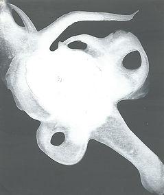 20003 -2.jpg