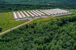 poultry barns.jpg