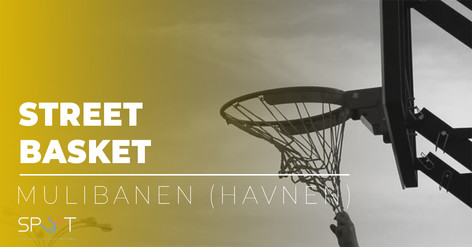 street basket.jpg