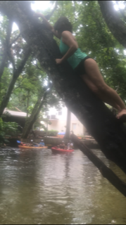 Lessons Learned From A Rope Swing