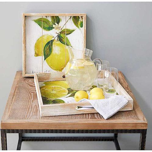 M.R. Lemon Print Tray