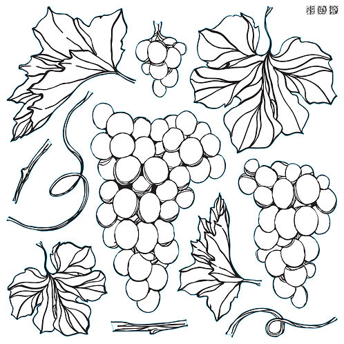 Grapes IOD Decor Stamp