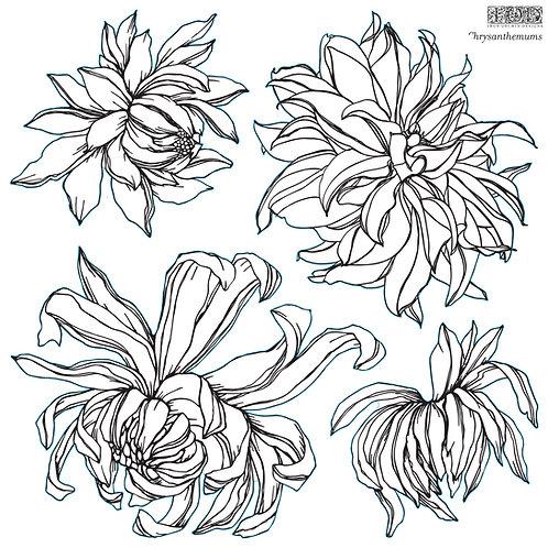 Chrysanthemum IOD Stamp Pre-Order