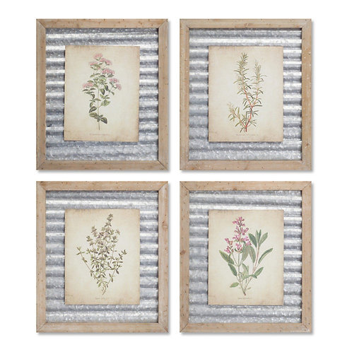 M.R. Framed Floral Prints