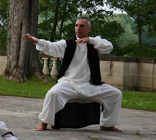 qi gong stef.png