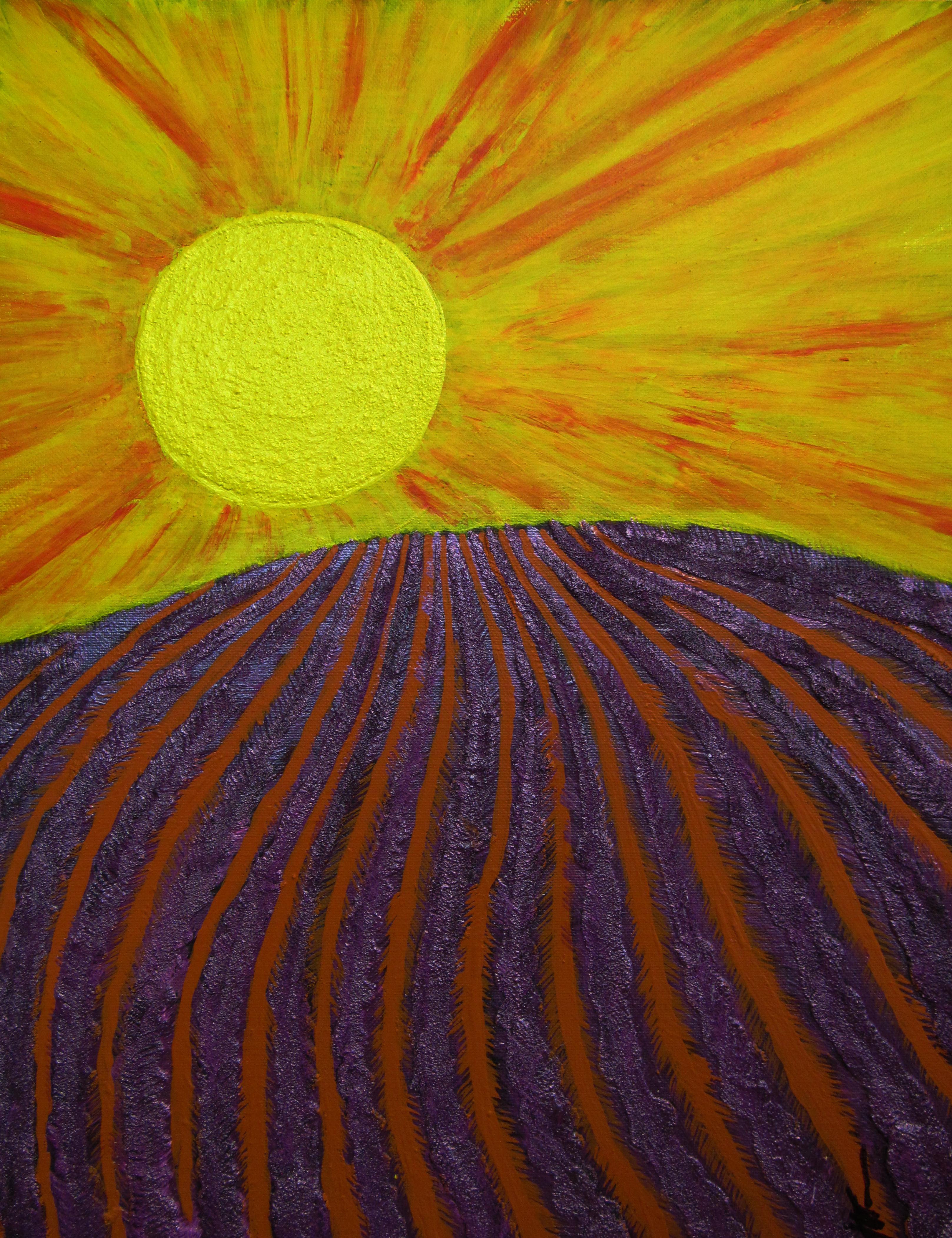 Lavender-Sunset.jpg