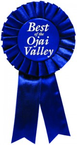 Voted best Artist in Ojai