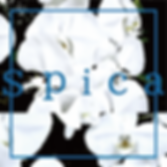 Spica_artwork_3000x3000.png