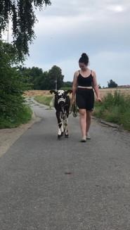Riana geht mit Babette spazieren