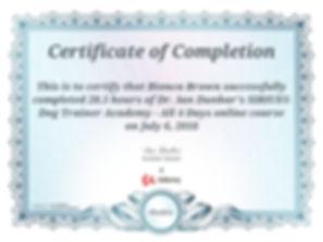 Sirius Dog Trainer Certificate.jpg