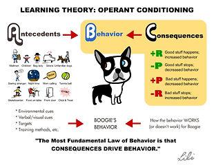 abc earning theory operantconditioning
