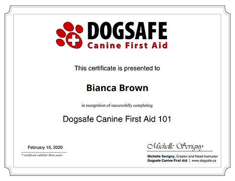 dogsafe certificate.png