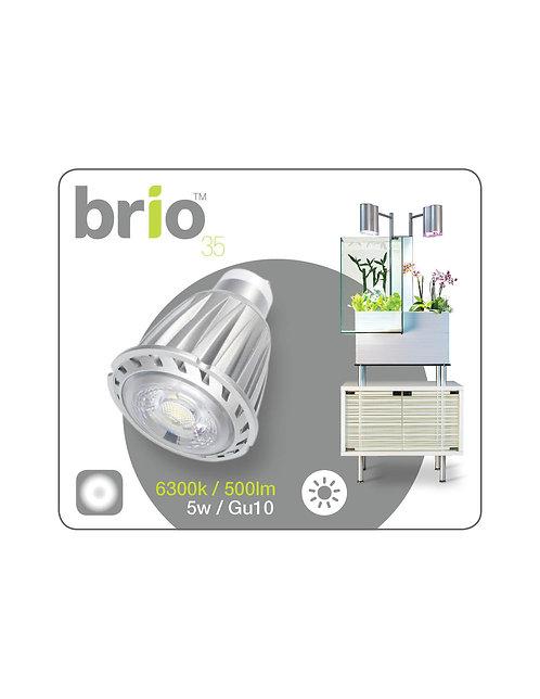 Brio35 - LED bulb, 6300k daylight