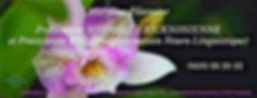 PHOTO-2020-02-11-08-49-58_edited_edited.
