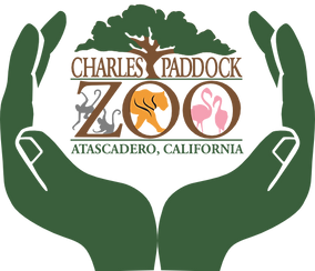 cpz-hands-logo-full-size.png