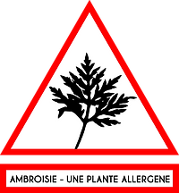 panneau ambroisie une plante qui provoque des allergies allergène attention
