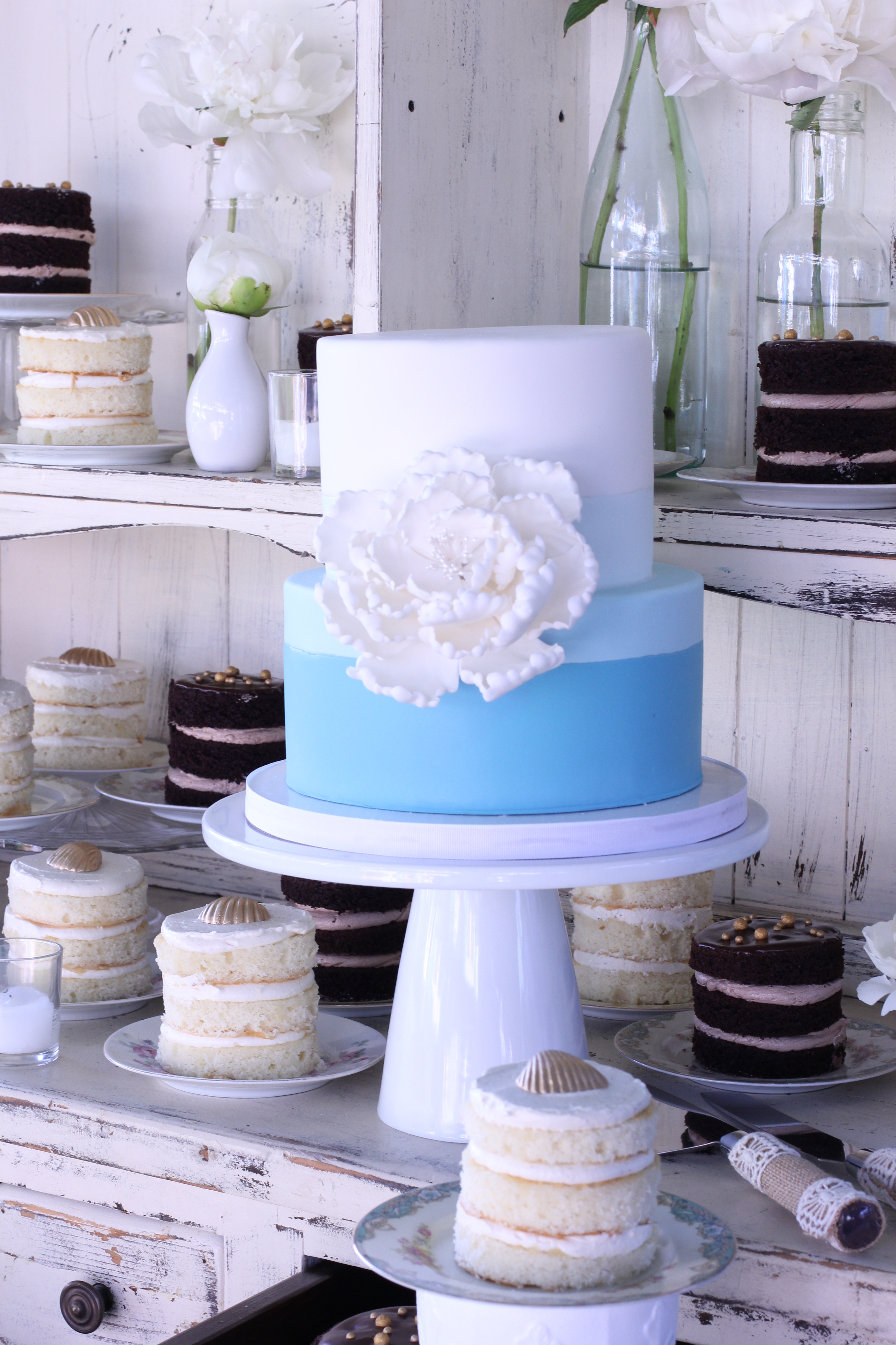 Mini Naked Cakes and Blue Ombre Cake