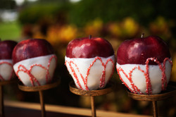 Candy Apples Tampa