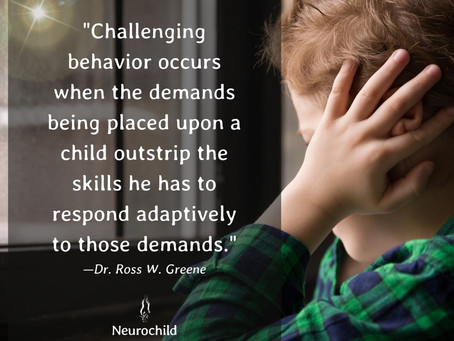 Helpful Information For Parents From Childmind.org            Sensory Processing Disorder - FAQ