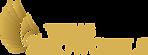 Vegas Showgirls Logo.png