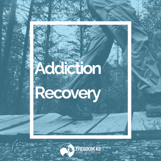 Addiction Recovery: How to Go from Surviving to Thriving