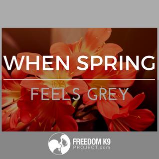 When Spring Feels Grey