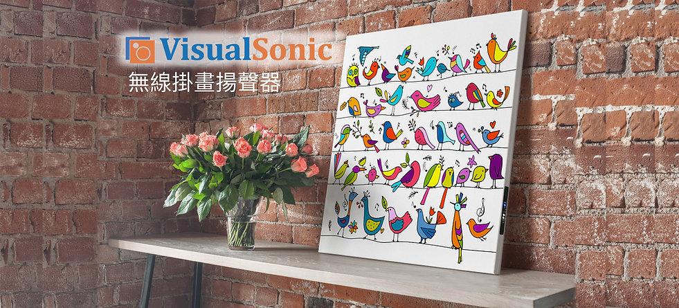WS_wb_visualsonic.jpg