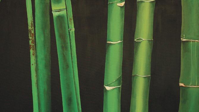 "HSBC ""Bamboos of the World"""